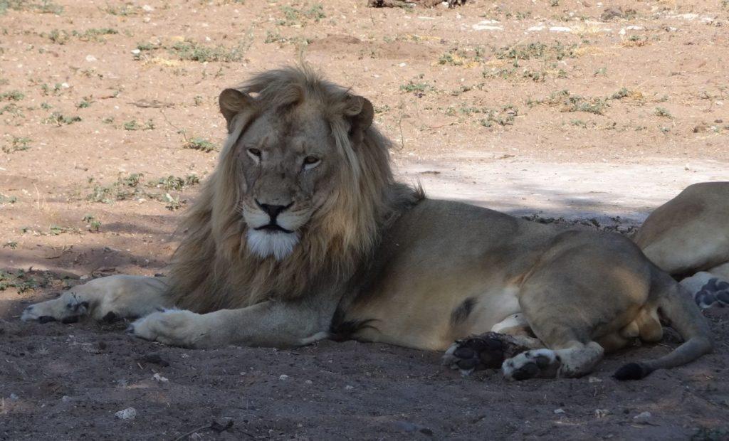 Namibia42